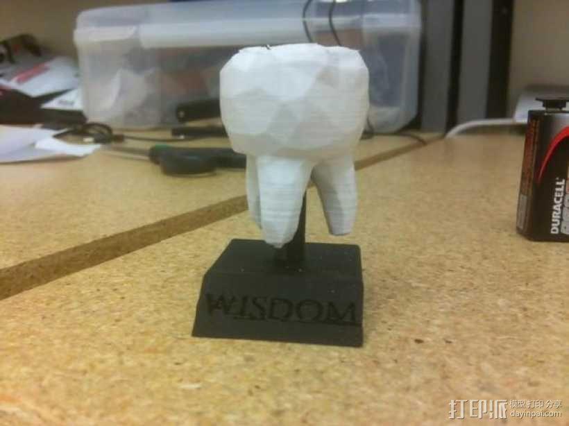 迷你智齿 3D模型  图1