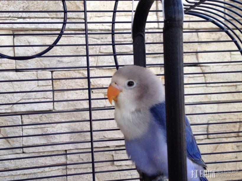 鸟笼:小鸟站架 3D模型  图1