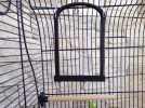 鸟笼:小鸟站架 3D模型 图2
