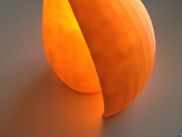 海贝形灯罩 3D模型  图3
