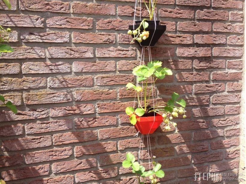 壁挂式盆栽盆 3D模型  图2