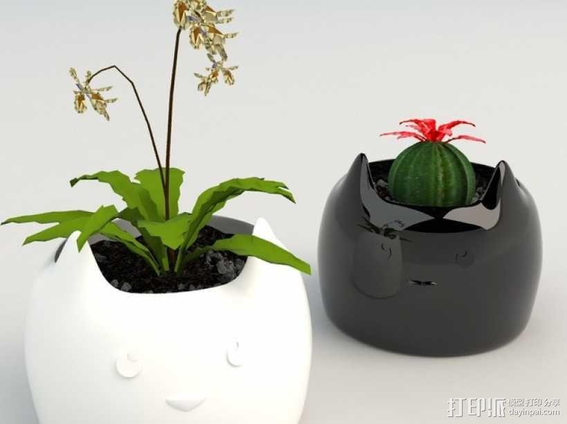 迷你可爱花盆 3D模型  图5