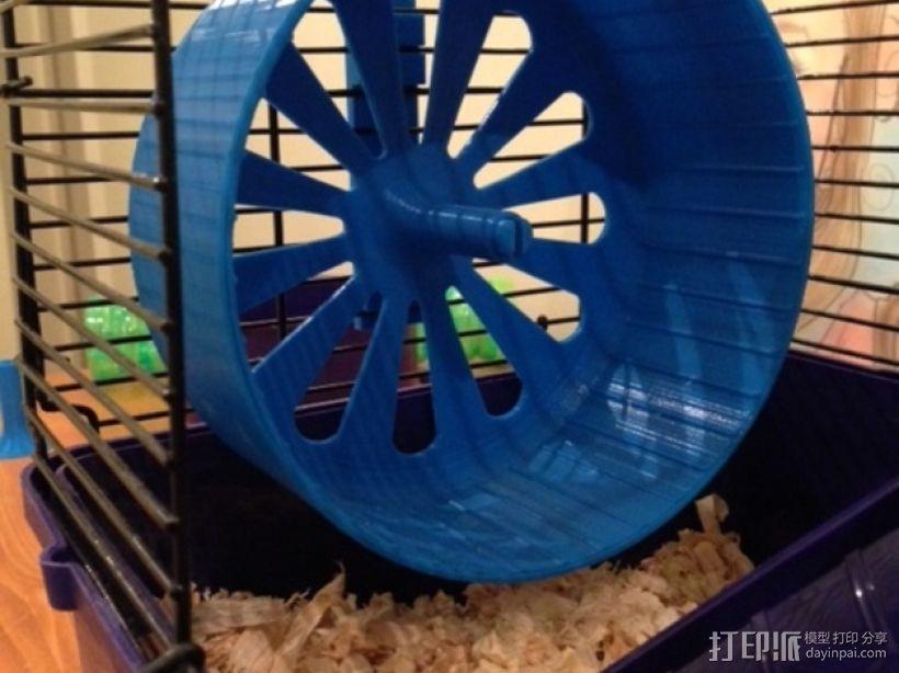 宠物仓鼠 滚动轮 3D模型  图1