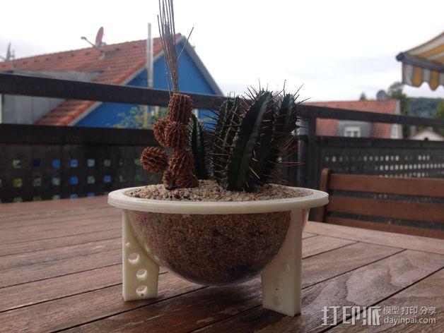 花坛支架 3D模型  图1