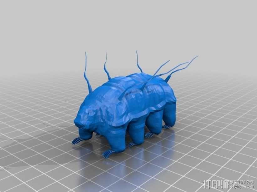 水熊虫  3D模型  图1