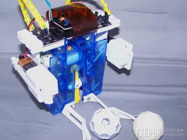 二十面体巴克球 3D模型  图2