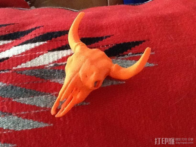 美洲野牛头骨模型 3D模型  图1