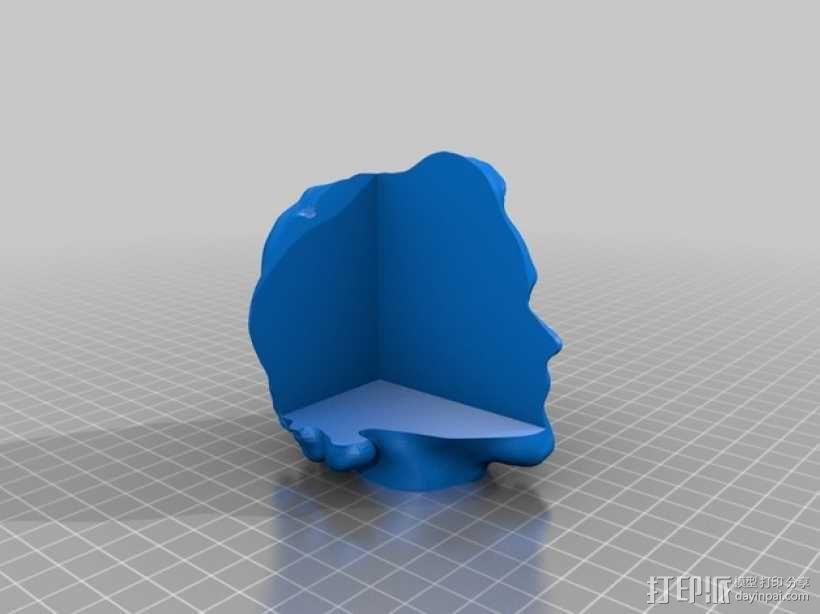 头部模型和头骨 3D模型  图5