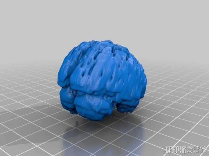 人脑  模型 3D模型  图2
