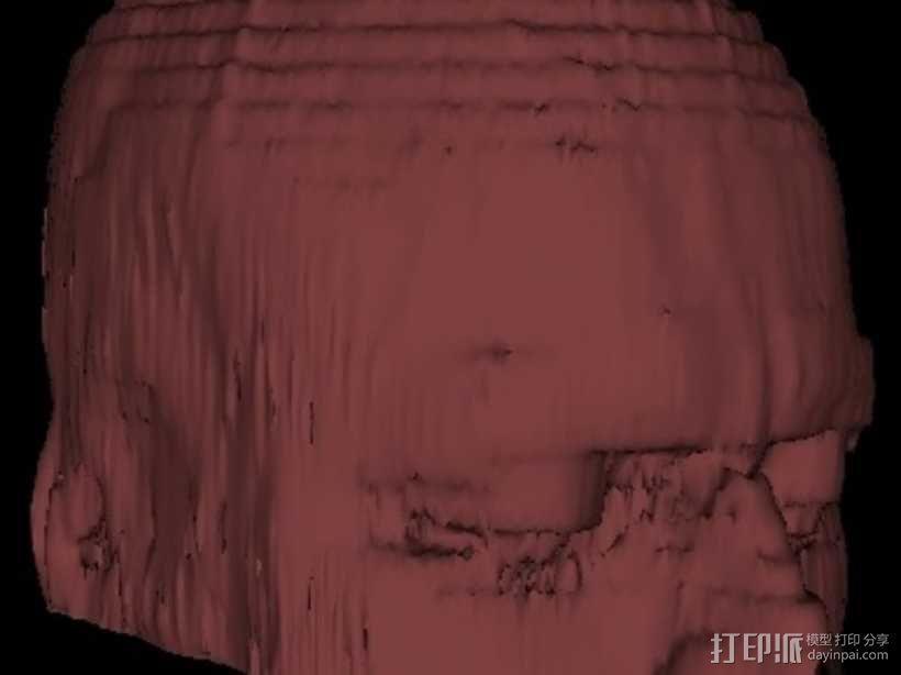 人脑  模型 3D模型  图3