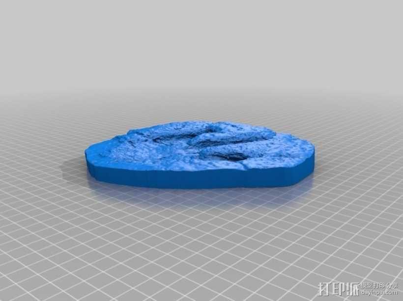 恐龙脚印化石模型 3D模型  图5