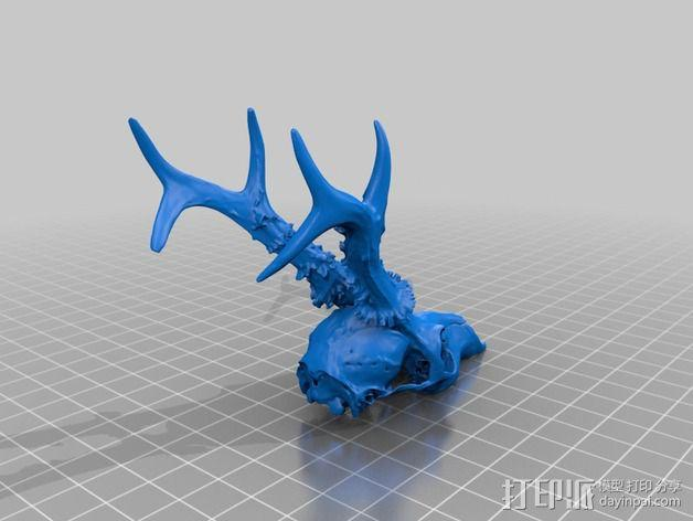 鹿头模型 3D模型  图2