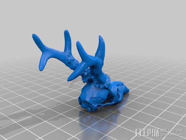 鹿头模型 3D模型  图4