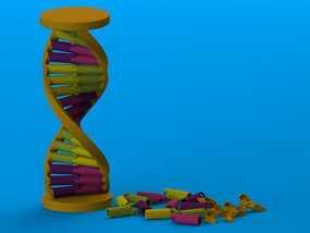 DNA积木 3D模型