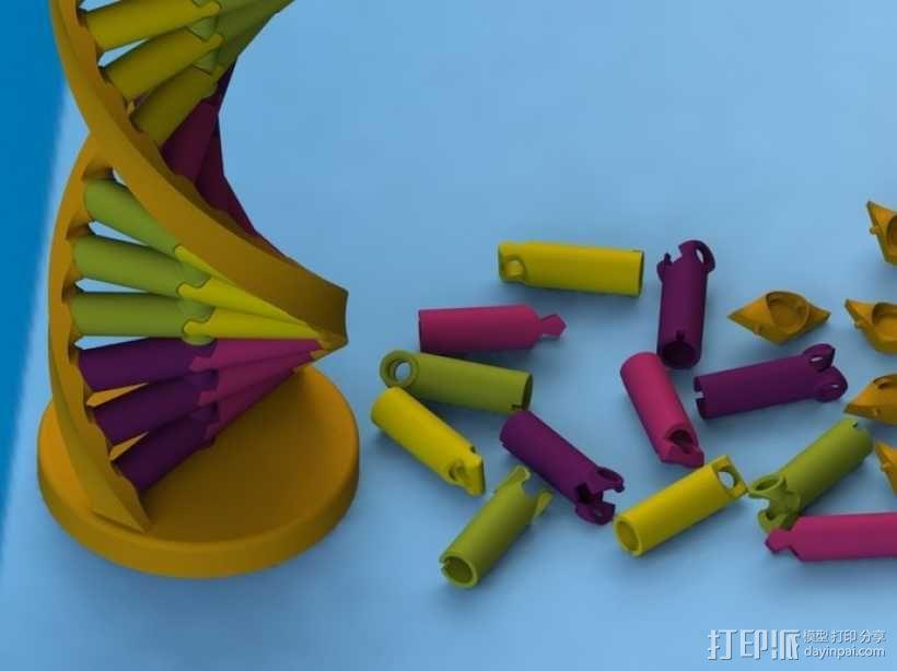 DNA积木 3D模型  图2