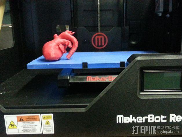 心脏模型 3D模型  图4