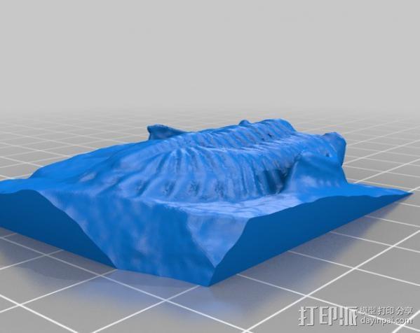 三叶虫 模型 3D模型  图2