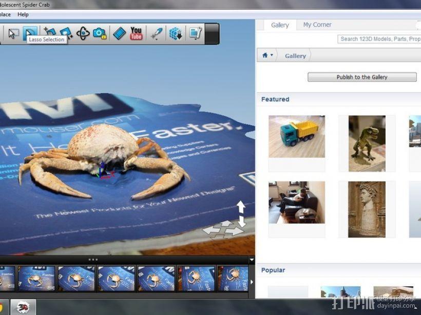 斑点蟹模型 3D模型  图2