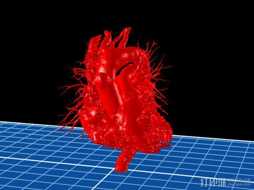 心脏模型 3D模型  图1