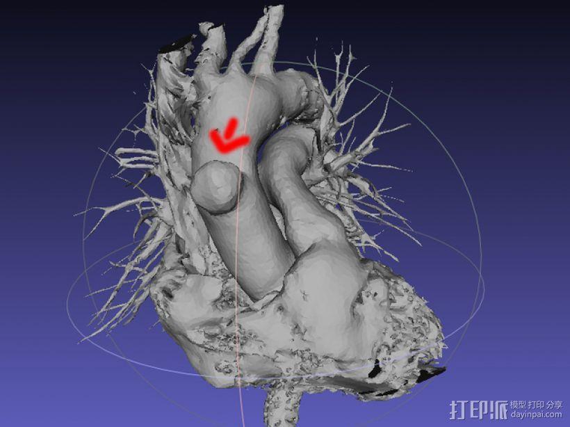 心脏模型 3D模型  图5
