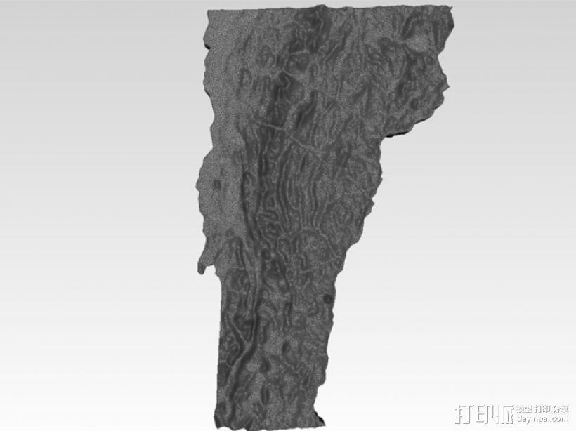 福蒙特州地形图模型 3D模型  图1