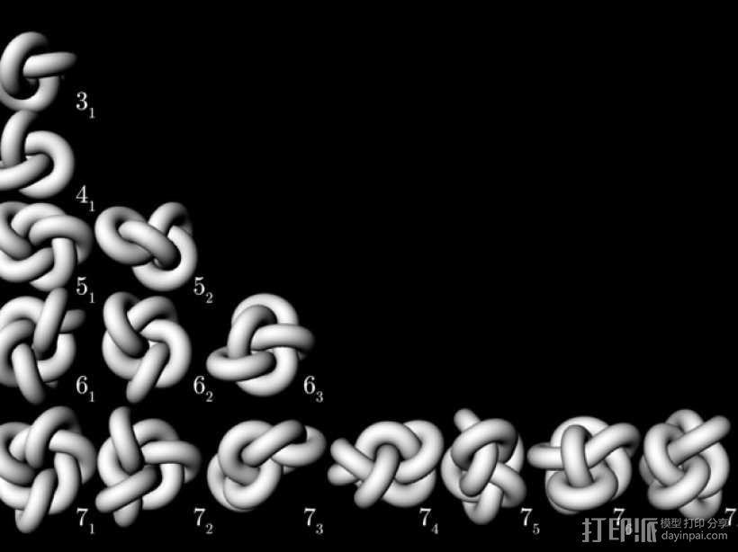 素型扭结 3D模型  图4