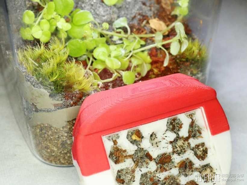 蚂蚁农场 模型 3D模型  图2