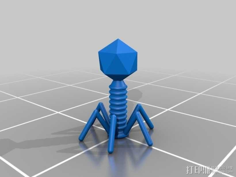 T2 噬菌体病毒模型 3D模型  图1