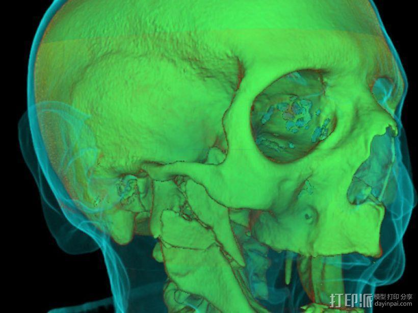分形头骨模型 3D模型  图4
