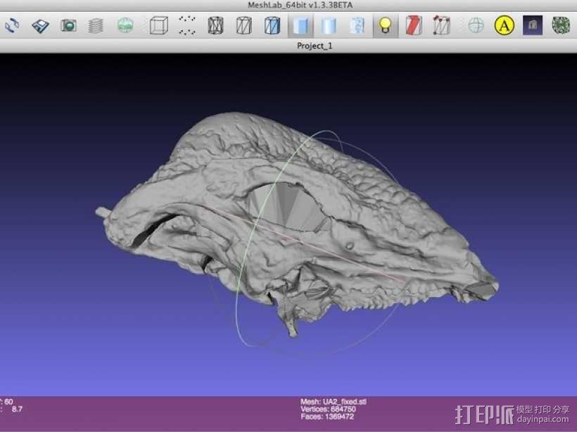 剑角龙头骨模型 3D模型  图1