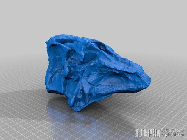 剑角龙头骨模型 3D模型  图2