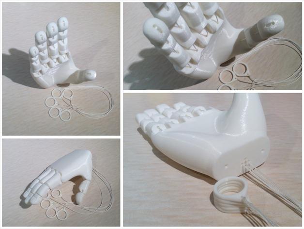 手 3D模型  图2