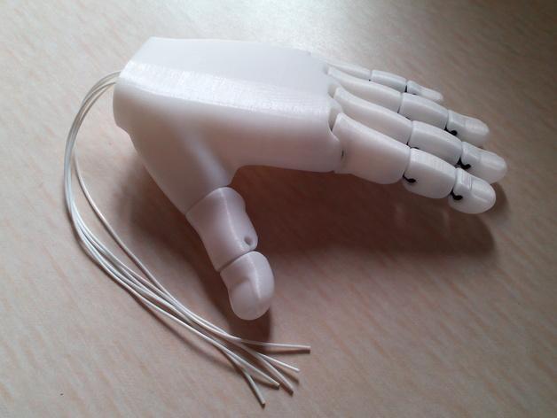 手 3D模型  图5