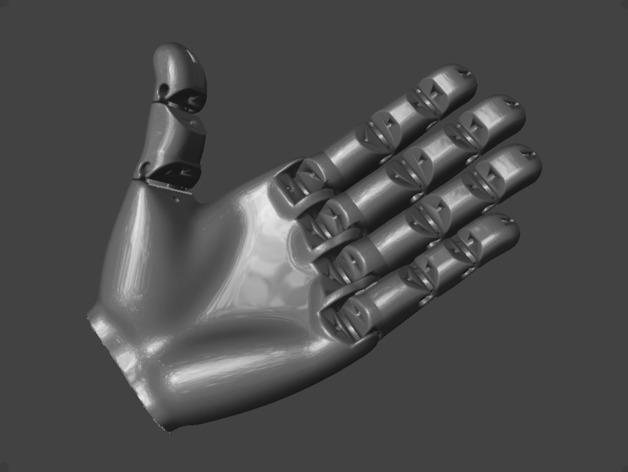 手 3D模型  图26