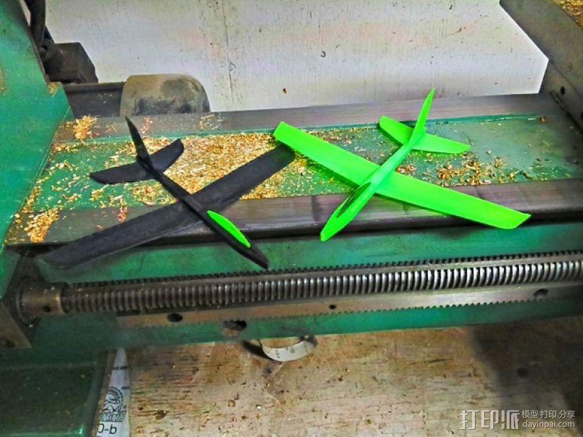 迷你滑翔机 3D模型  图1