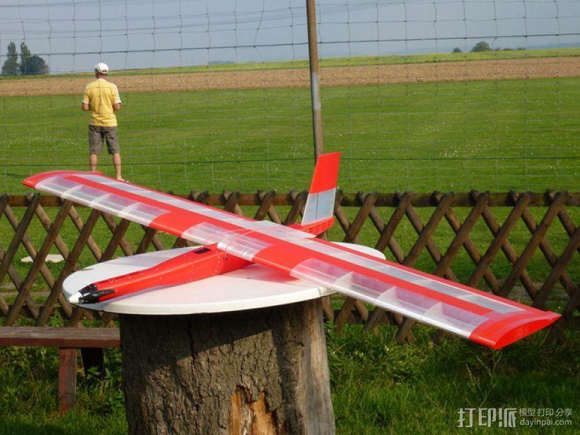 """""""红色的天鹅""""——最大的全打印滑翔机 3D模型  图1"""