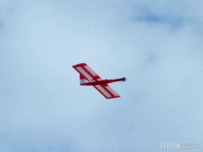 """""""红色的天鹅""""——最大的全打印滑翔机 3D模型  图4"""