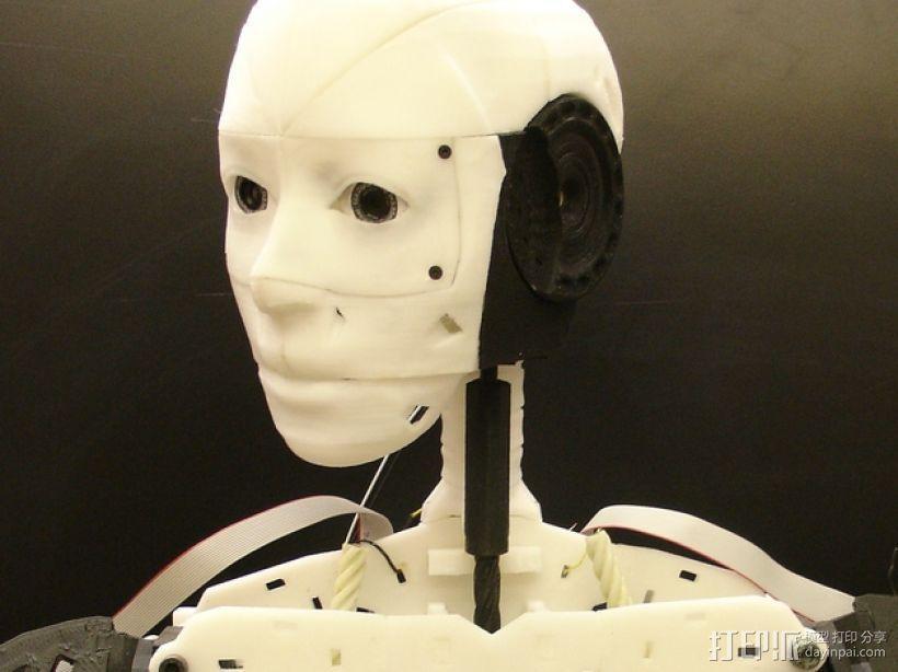 """机器人""""InMoov""""的脑袋 3D模型  图1"""