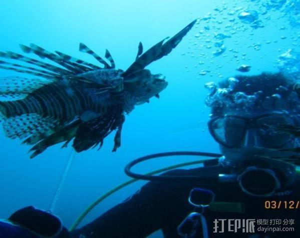 捕获狮子鱼的长矛 3D模型  图4