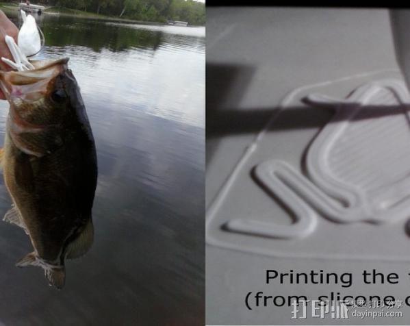 青蛙 鱼漂 3D模型  图2