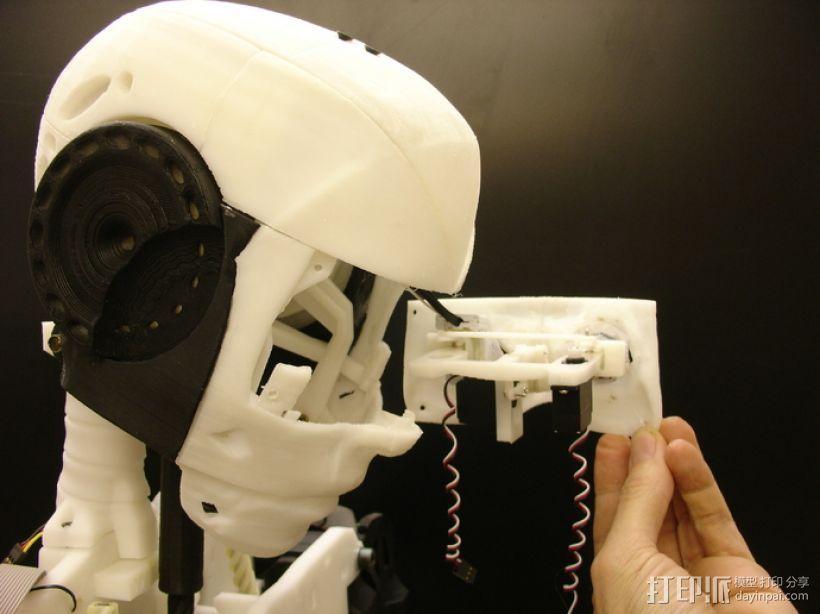 InMoov机器人眼部 3D模型  图1