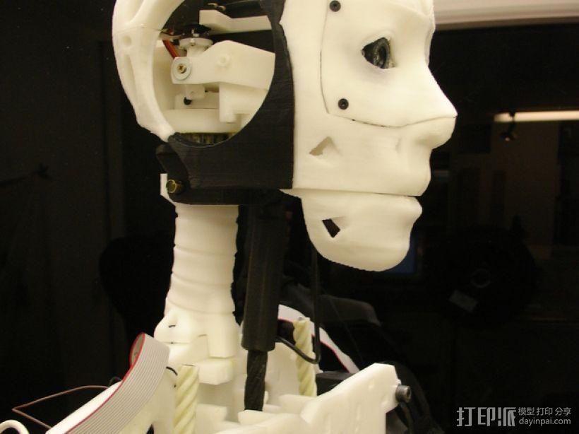 Inmoov机器人颈部 3D模型  图1