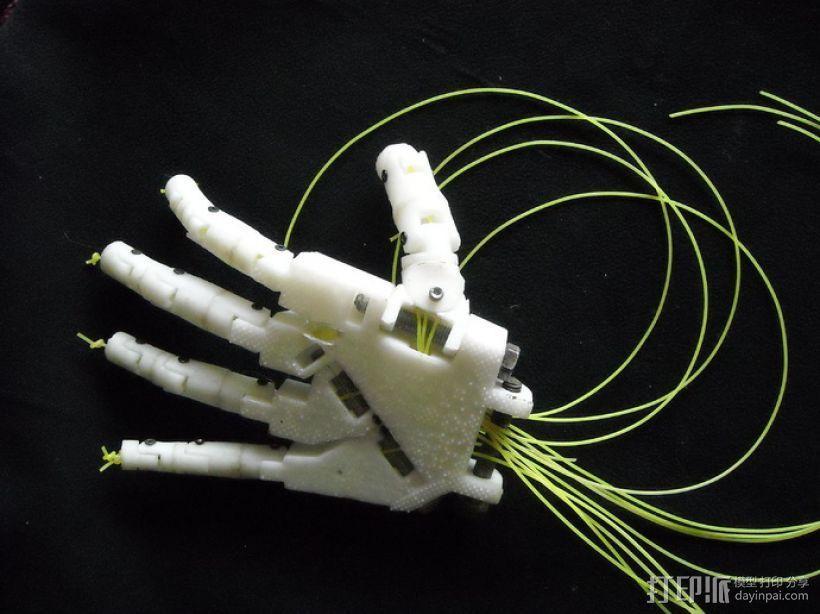 Inmoov机器人 手掌 3D模型  图6