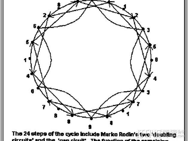 罗丹线圈  3D模型  图2