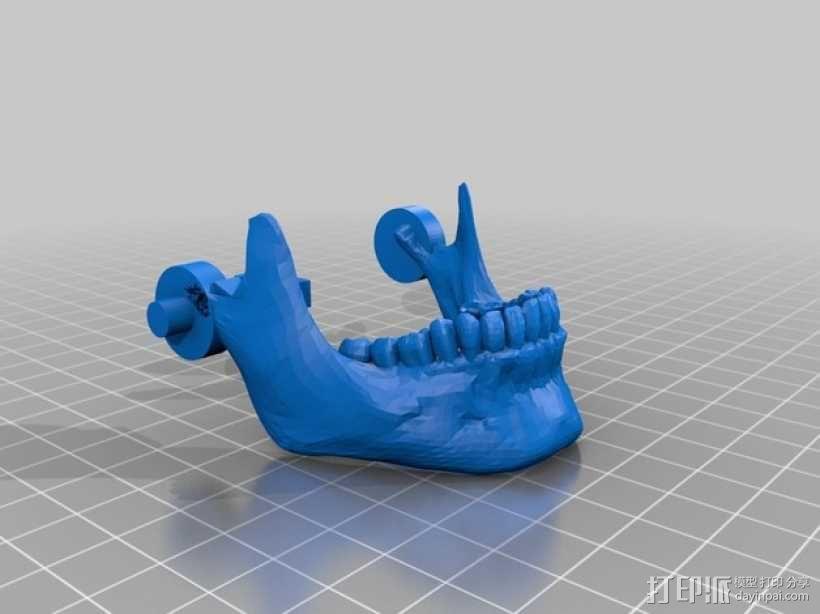 骷髅头 机器人 3D模型  图4