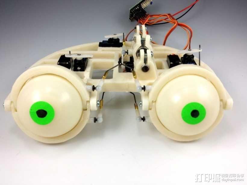 电子仿生眼球 3D模型  图1