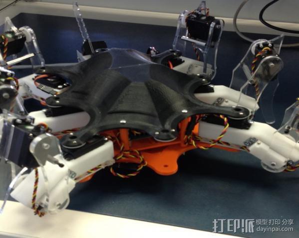 六足昆虫 3D模型  图5