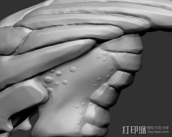 Mass Effect Turian摆件 3D模型  图3