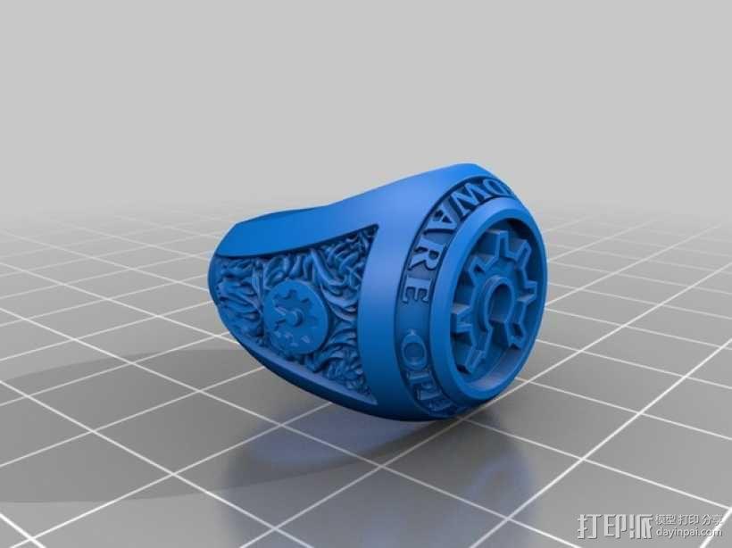 个性化开源戒指 3D模型  图3