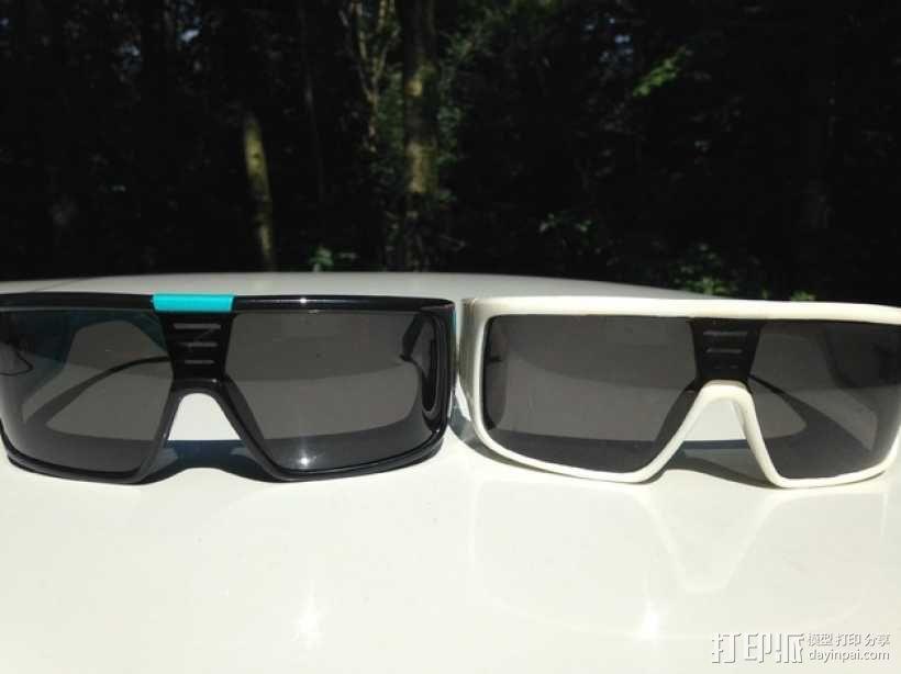 Dragon DOMO太阳眼镜/墨镜 3D模型  图1
